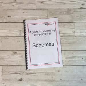 175 Recognising And Promoting Schemas